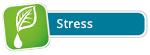 Ihre persönliche Tropfen-Mischung für Stress